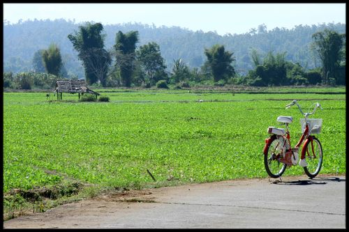 Ma bicyclette a Mae Sariang