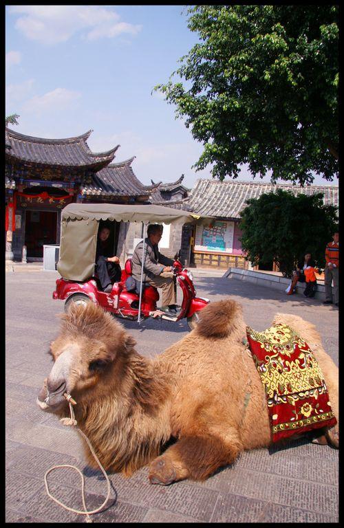Yunnan 4