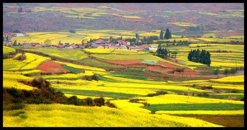 Yunnan 18