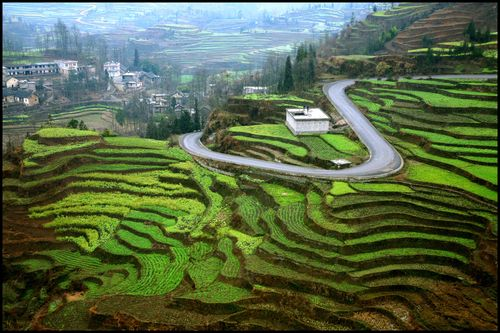 Blog - Sur la route de Suoga